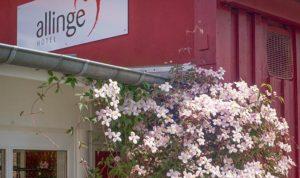 Detailbillede af Hotel Allinge