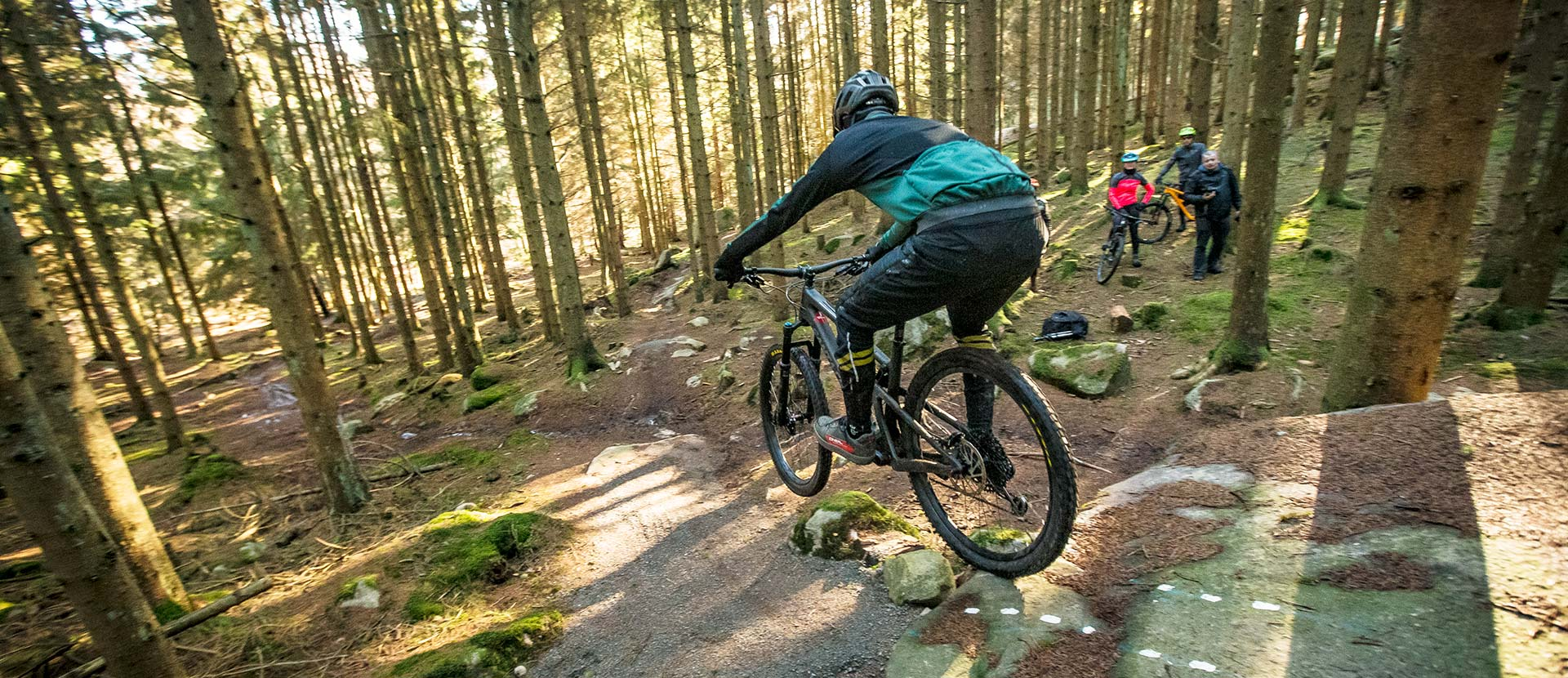 A man from behind on a mountainbike, who is biking on a trail in Almindingen Forest on Bornholm